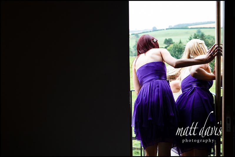 Purple bridesmaid dresses from behind