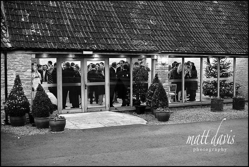 Christmas trees at wedding