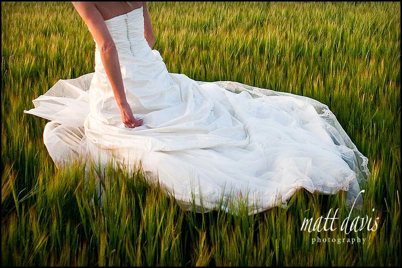 beautiful photo of the back of a brides dress in a corn field