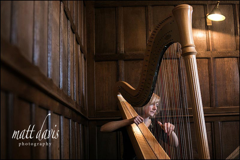 Harpist playing at Ellenborough park wedding