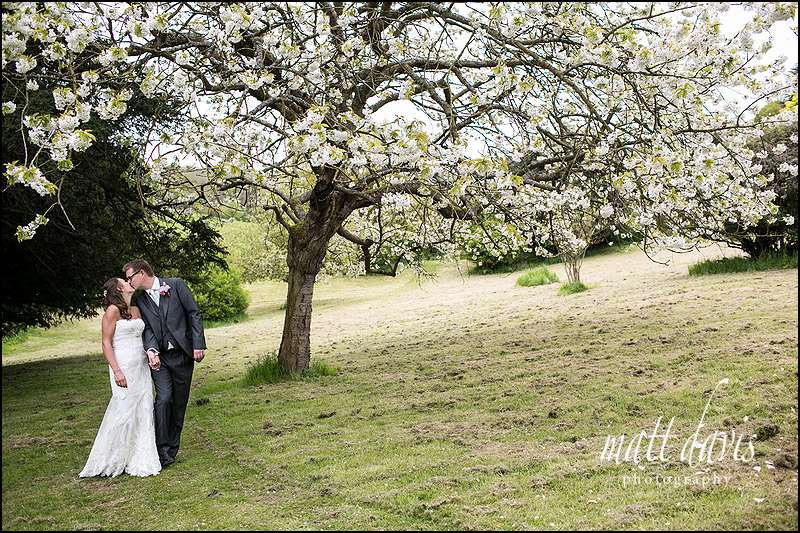 Wedding photos in the tree blossom at Dumbleton Hall