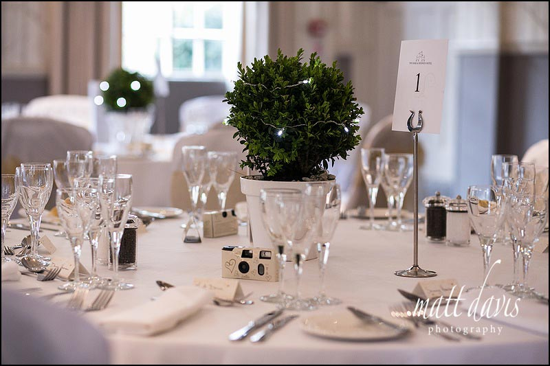 unusual table center pieces with small potted plant